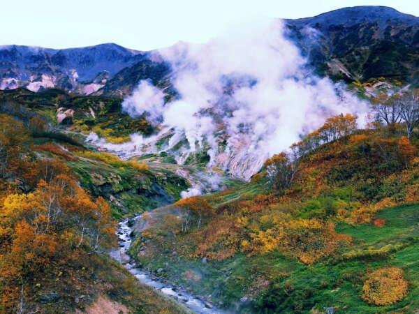 Посетить Долину гейзеров на Камчатке