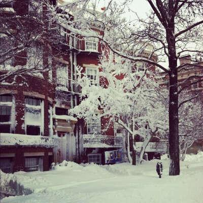 Хочу снежную зиму)))