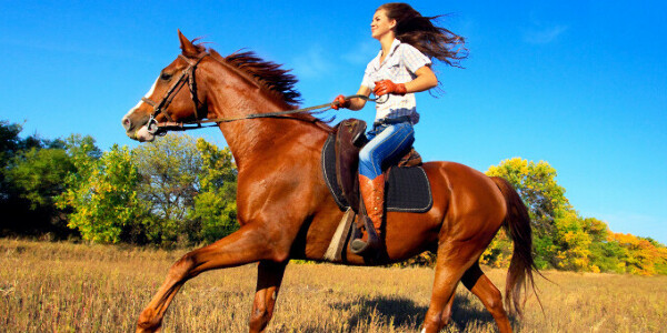 урок езды на лошади