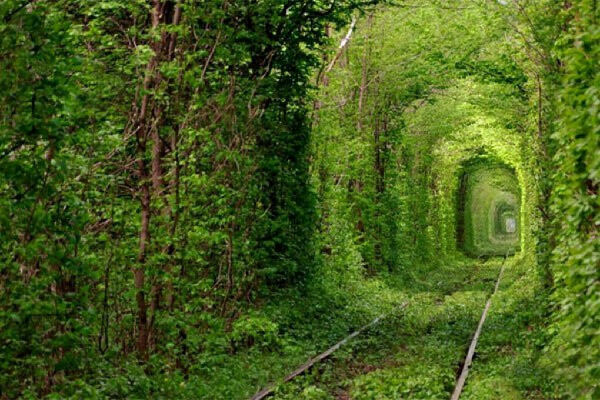 Тунель кохання в Рівно