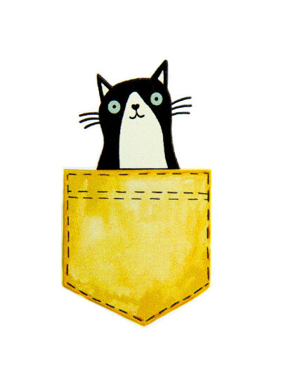 Брошь С Котиком в кармашке