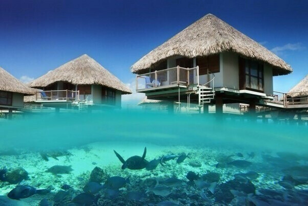 На Тихий океан, остров Бора-Бора.