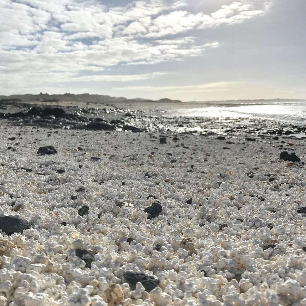Фуэртевентура, Канарские острова