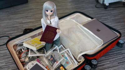 Smart Doll - Chitose Shirasawa 白澤千歳スマートドール
