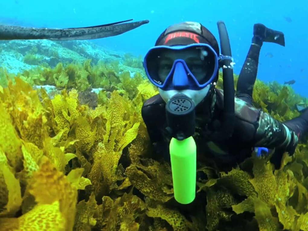 SCORKL - Breathe underwater