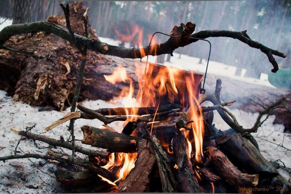 Посиделки с друзьями у костра в лесу