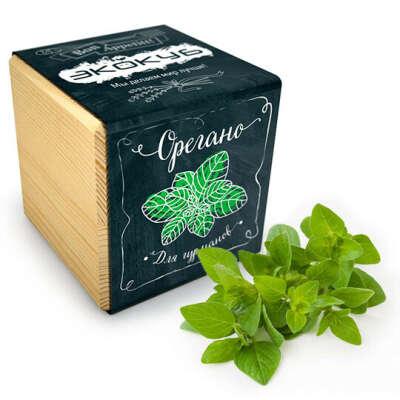 Набор для выращивания Ecocube Black  / Орегано