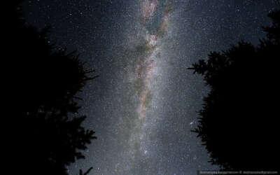 смотреть на звёзды, лёжа на траве