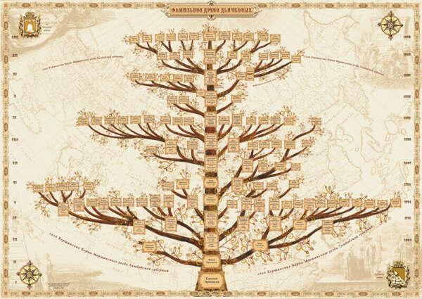 Сделать генеалогическое древо своей семьи