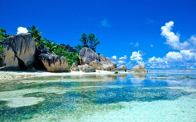 Поехать на Шри-Ланку