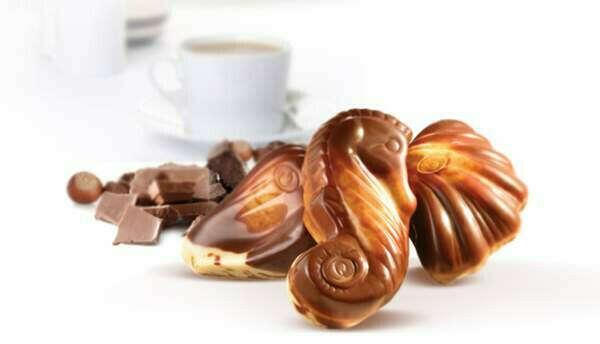 Бельгийский шоколад ракушки
