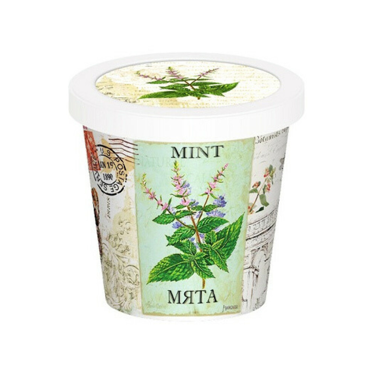 Набор для выращивания 'Aroma Herb' / Мята