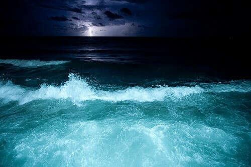 Покупаться в ночном море.