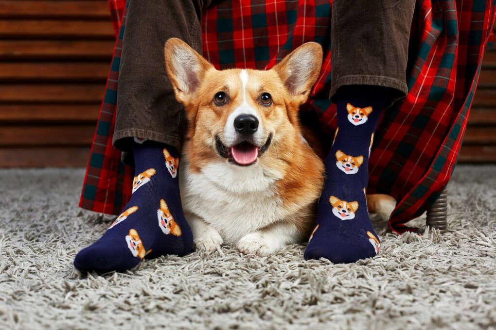 Женские носки   Интернет-магазин цветных носков - все  носки мужские и женские   Funny Socks