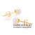 Натуральный морской жемчуг Акойя Класс ААА Высшая категория 18 к Золото Серьги гвоздики Бесплатная доставка DAIMI