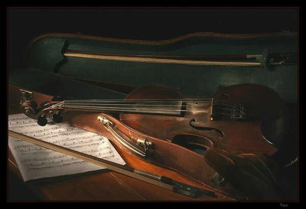 скрипку