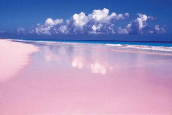Посетить Pink Sands Beach, остров Харбор, Багамские острова