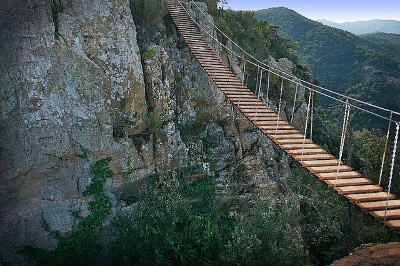 Пройти по подвесному мосту