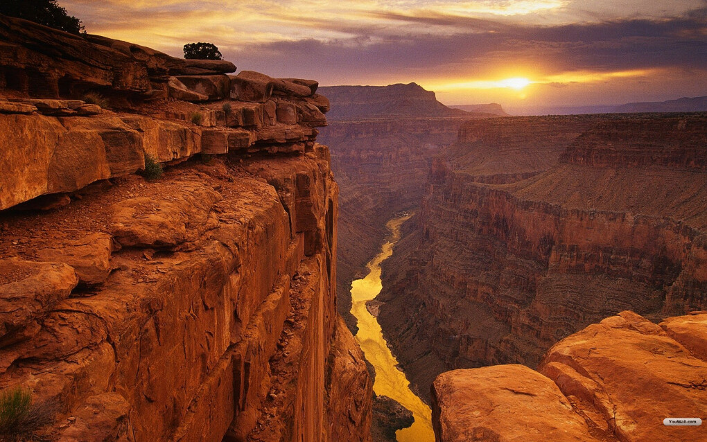 To visit Grand Canyon