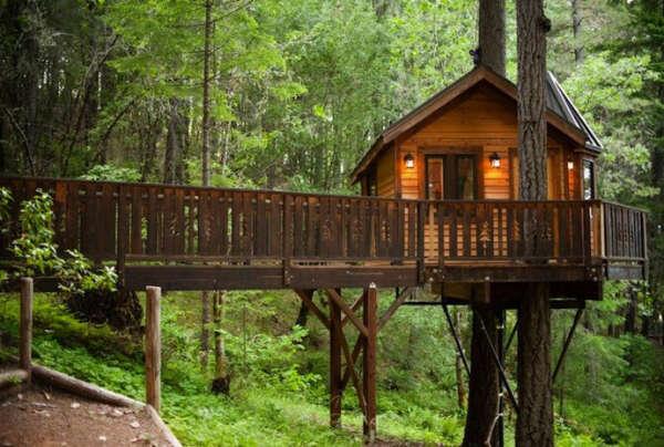 Пожить в доме на дереве