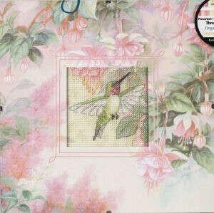 Красивая колибри