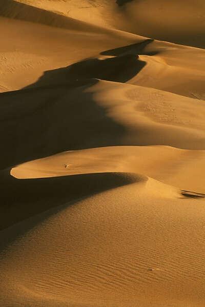 Серфинг в пустыне