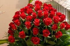 хочу 50000 роз на день рождение 2 апреля