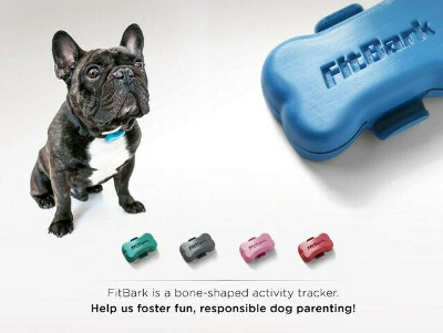 FitBark: World's tiniest wireless activity tracker for dogs