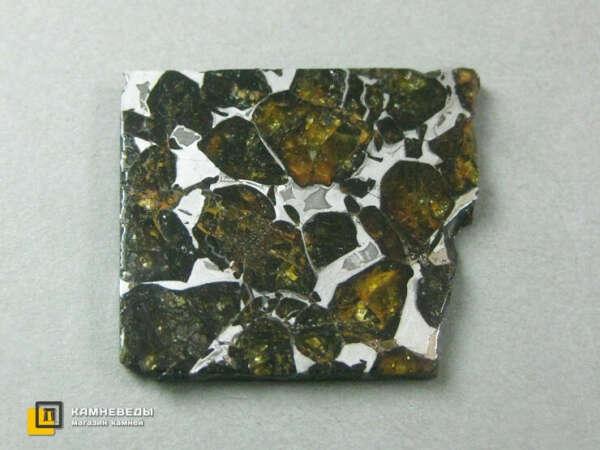Кусок метеорита Палласит