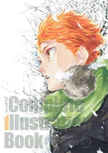 Haikyuu!! Complete Illustration Book (если оно будет переведено однажды на енгл ХОТЯ БЫ)
