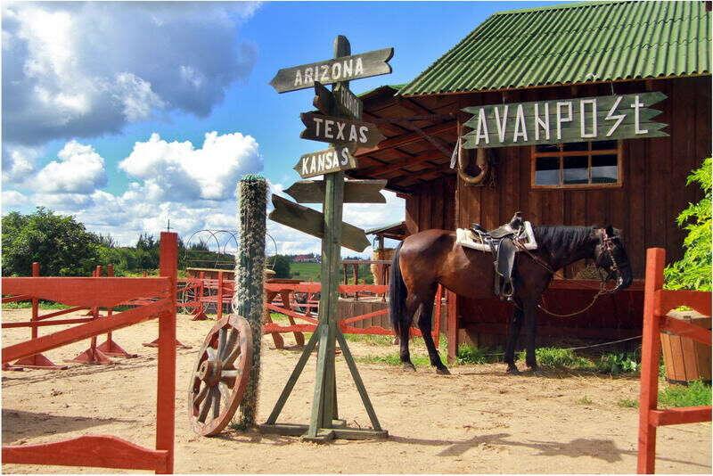 Сертификат на конные занятия на манеже