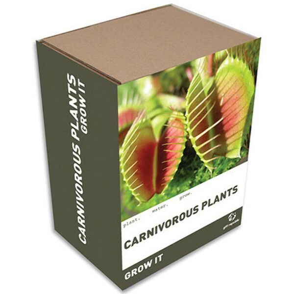 Grow it Carnivorous Plant Gift Box- Unusual gifts from GettingPersonal.co.uk