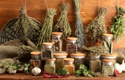 Разбираться в травах, уметь составить вкусный и полезный чай