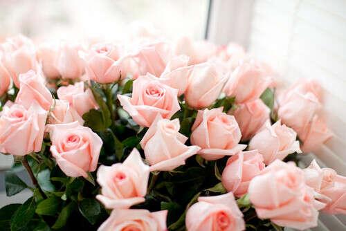 Красивый букет роз